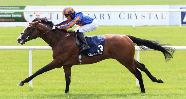 Image result for 2018 tattersalls gold cup