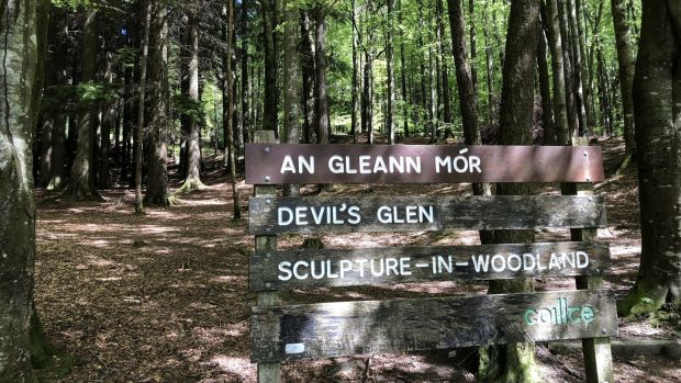 The visitor to the Devil's Glen is well catered for with information panels, good parking and two well-marked trails.