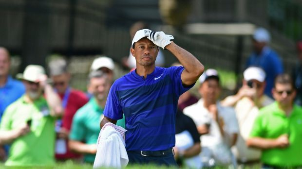 Tiger Woods shot a second round 67 at the Memorial Tournament. Photograph: David Dermer/AP