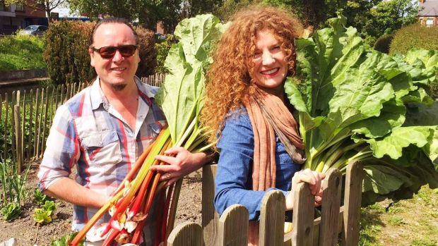 Collecting rhubarb for Dublin City Gin