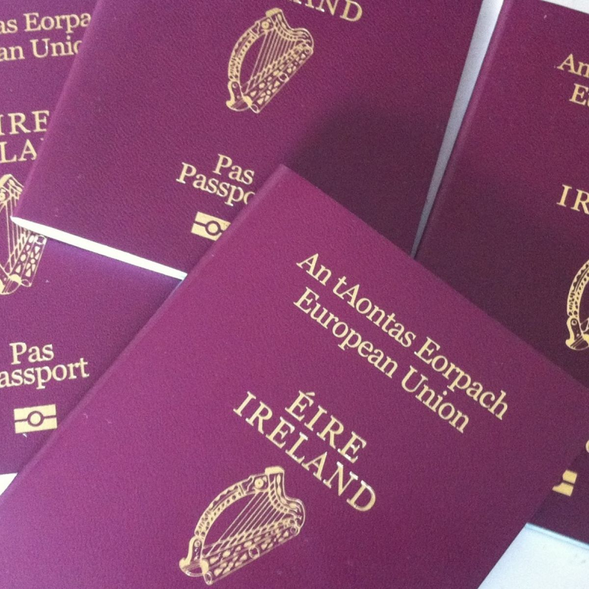 Need A Passport In A Hurry Conor Pope Has All The Answers