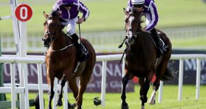 Happily (R) is bidding for French Oaks glory on Sunday. Photograph: Tommy Dickson/Inpho