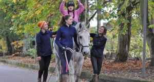 Horse power: the benefits of equine therapy
