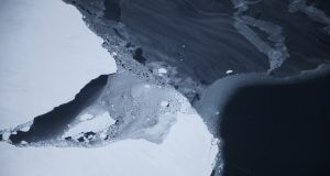 Ice floats near the coast of Antarctica. Photograph: Nasa