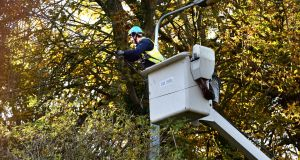 ESB crews are working to restore power after Storm Hector brought down trees in many areas. File photograph: Cyril Byrne/The Irish Times.