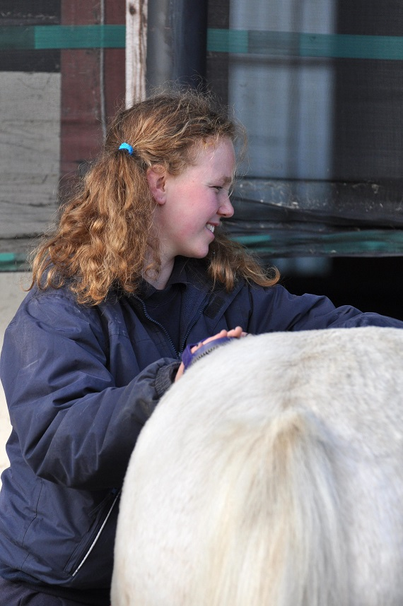 Una Hogan grooming Danny as part of the Supported Helpers Programme.