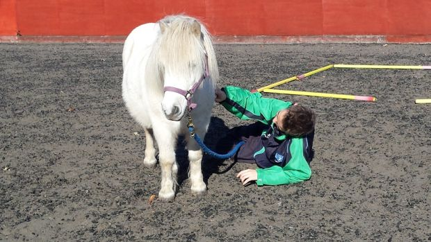 Relaxing with Sean as part of an Equine Assisted Learning Session.