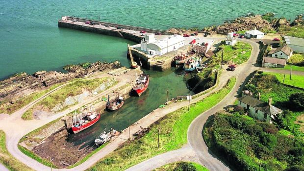 An aerial view of Clogherhead Harbour.