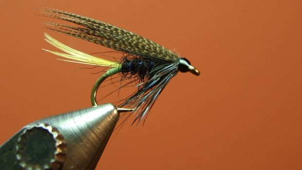 Connemara and Black Variant, tied by Jimmy Tyrrell.