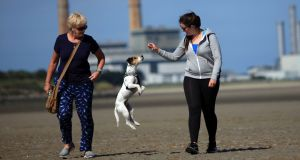 Judy and Kim Doran, from Crumlin, with Nugget, a rescue dog from the DSPCA, enjoy the warm weather on Sandymount Strand. Photograph:  Garrett White