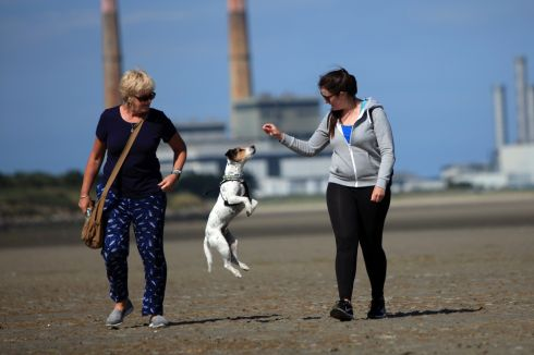 Judy Doran from Crumlin and Kim Doran and Nugget the dog Doran, a rescue from the DSPCA, enjoying the warm weather on Sandymount Strand. Photograph: Garrett White