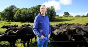 From Cork buffalo to Meath mustard - meet the makers feeding Ireland