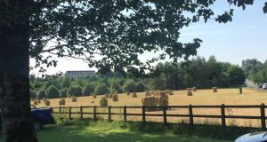 Square hay bales in Carrick-on-Shannon