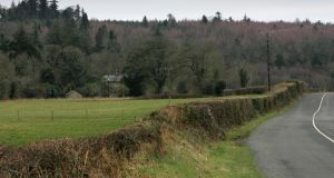Cut hedgerow near Shillelagh in Co Wicklow. Photograph: Frank Miller/The Irish Times
