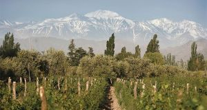 Win a trip for 2 to discover the homeland of Trivento wines in Mendoza, Argentina.
