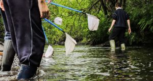 "StreamScapes field trip: ""to see children in the river, splashing with their nets, holding creepy-crawlies in their hands, this is a great way to connect with nature,"" says Bláithín Ní Áinin"