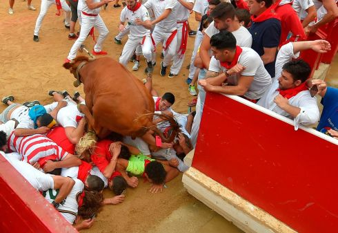A heifer vaults revellers at the bullring at the San Fermin festival in Pamplona, northern Spain. Photograph: Ander Gillenea/AFP/Getty Images