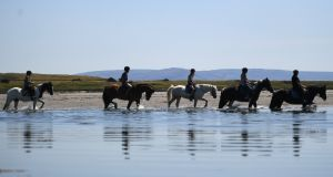 Horses in the water on Rusheen beach during sunny weather in Co Galway. Photograph: Reuters