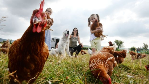 George the Chicken Dog: Clotilde Kiely, from Comeragh Mountain Poultry with her daughters Eloise and Juliette and her chicken dog George. Photograph: Alan Betson/The Irish Times
