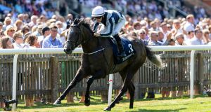 Colm O'Donoghue partners Alpha Centauri to victory at Newmarket. Photograph: Paul Harding/PA