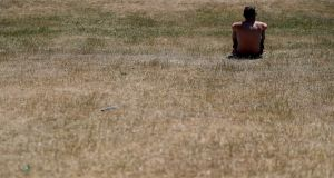 Dublin's Phoenix Park during the prolonged hot, dry spell. File photograph: Brian Lawless/PA