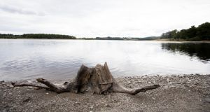 Low water levels at Blessington Lake. Photograph: Tom Honan