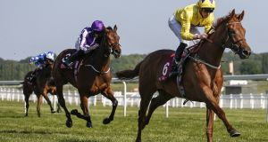 James Doyle riding Sea of Class at Newbury Racecourse. Photograph: Alan Crowhurst/Getty Images