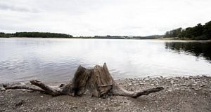 Low water level at Blessington Lake. The effect of this extended dry spell are already being felt, particularly in Dublin where supply in some areas has been restricted to little more than a trickle from 10pm to 5am. Photograph: Tom Honan