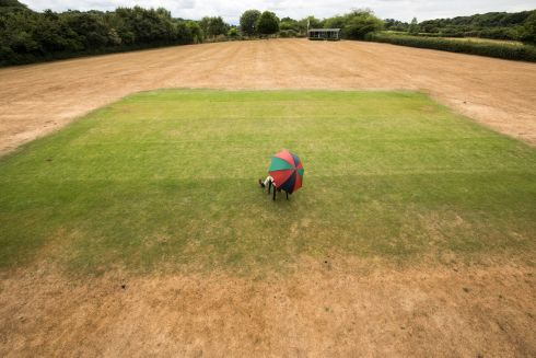 WHERE THE GRASS IS GREENER: A man sits at a pat of a cricket ground that has been watered with a hosepipe, with roasted grass all around, in the village of Priston, near Bath, England. Millions of residents in the northwest of England are facing a hosepipe ban due to the ongoing heatwave. Photograph: Matt Cardy/Getty Images