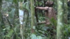 Footage captures sole survivor of indigenous Amazon tribe