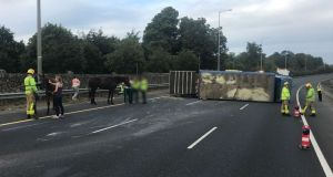 The scene after a truck carrying horse overturned on the M50. Photograph: Dublin Fire Brigade