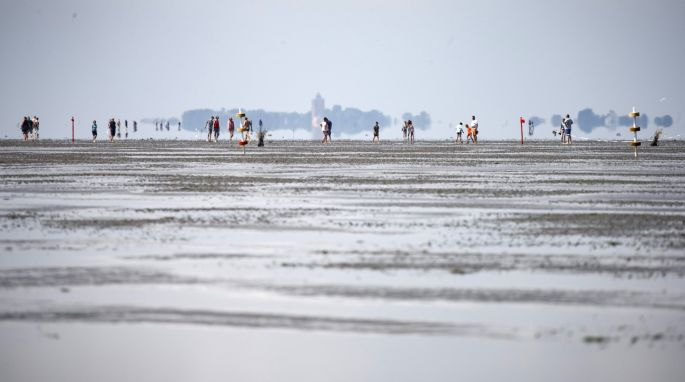 9945804a7 Walking along the mudflats during the annual horse-buggy races at Duhnen in  Cuxhaven,