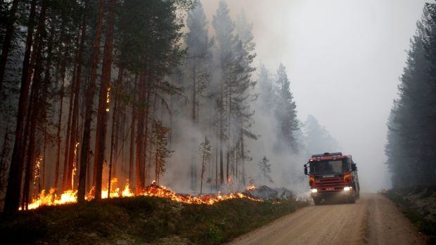 A fire vehicle attends a forest fire in Karbole, Sweden, on July 15th. Photograph: Mats Andersson / TT News Agency / AFP) / Getty Images