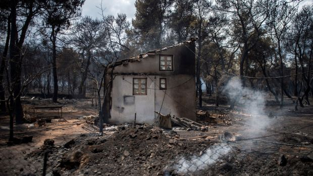 The aftermath of a wildfire at the village of Neos Voutzas, near Athens. Photograph: Getty Images