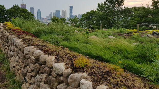 The Irish Hunger Memorial with the skyscrapers of Jersey City in the background. Photograph: Chris Dooley
