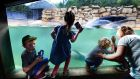Children watching the sea lions at Dublin Zoo. Photograph: Cyril Byrne / The Irish Times