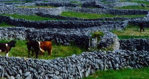 Stone walls on Inis Meáin