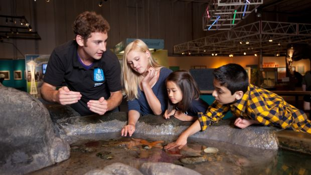 Exploring the tide pool at the Pacific Science Center in Seattle. The centre, which is right next door to the city's famous Space Needle, has numerous indoor and outdoor offerings. Photographs: Pacific Science Center