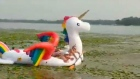Happy ever after: police rescue bathers trapped on inflatable unicorn