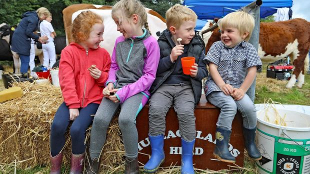 Alicia McAloon, Rebecca Windrum, Josh McAloon and Jack Windrum stop for a chat and a bite to eat as they enjoy the 77th annual Virginia Agricultural Show in Virginia, Co Cavan on Wednesday afternoon. Photograph: Lorraine Teevan