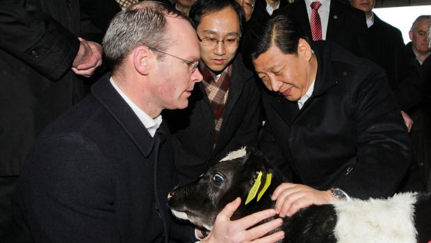 Minister of Agriculture, Food and Marine Simon Coveney with Chinese vice-president Xi Jinping during a visit to the Lynch Farm at Sixmilebridge, Co Clare, in 2012. Photograph: Maxwell Photography/PA Wire