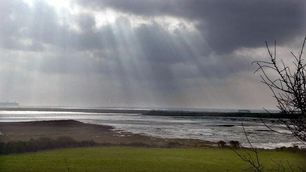 The wetlands between Dunmore East Road and Tramore Strand and Tramore Dump. Photograph: David Sleator