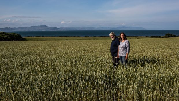 Andrew Workman and his wife Leonie who run an organic grain farm in Dunany, Co Louth. Photograph: James Forde