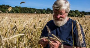"Andrew Workman: ""Farmers in Ireland can produce flour that will make a great yeast loaf. It will be quite a bit denser than French or Italian bread, but it tastes great."" Photograph: James Forde"