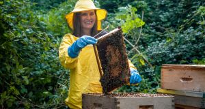 PhD student Saorla Kavanagh of DCU, who led the research that has found Irish heather honey as having health benefits comparable with manuka honey