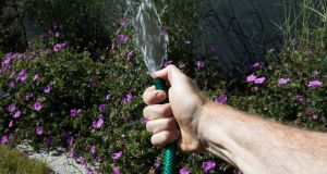 Hosepipe ban was yet another a short-term initiative when a long-term plan is urgently required. Photograph: Tom Honan