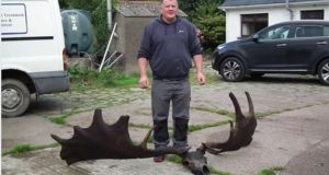 Raymond McElroy pictured with the antlers and skull of a Great Irish Elk, taken up today by a net in Lough Neagh. Photograph: Ardboe Gallery, Facebook