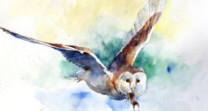 Annual watercolour showcase to run at new Phoenix Park venue