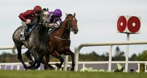 Oisín Murphy riding Roaring Lion (left) gets up to beat Ryan Moore and Saxon Warrior to claim the  Qipco Irish Champion Stakes  at Leopardstown. Photograph: Alan Crowhurst/Getty Images