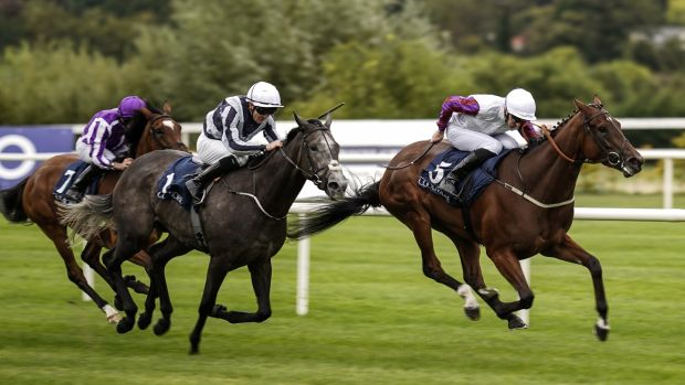 Daniel Tudhope riding Laurens (right) to win the Coolmore Fastnet Rock Matron Stakes from Alpha Centauri at Leopardstown. Photograph: Alan Crowhurst/Getty Images